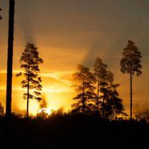 Estland Herbst 2021